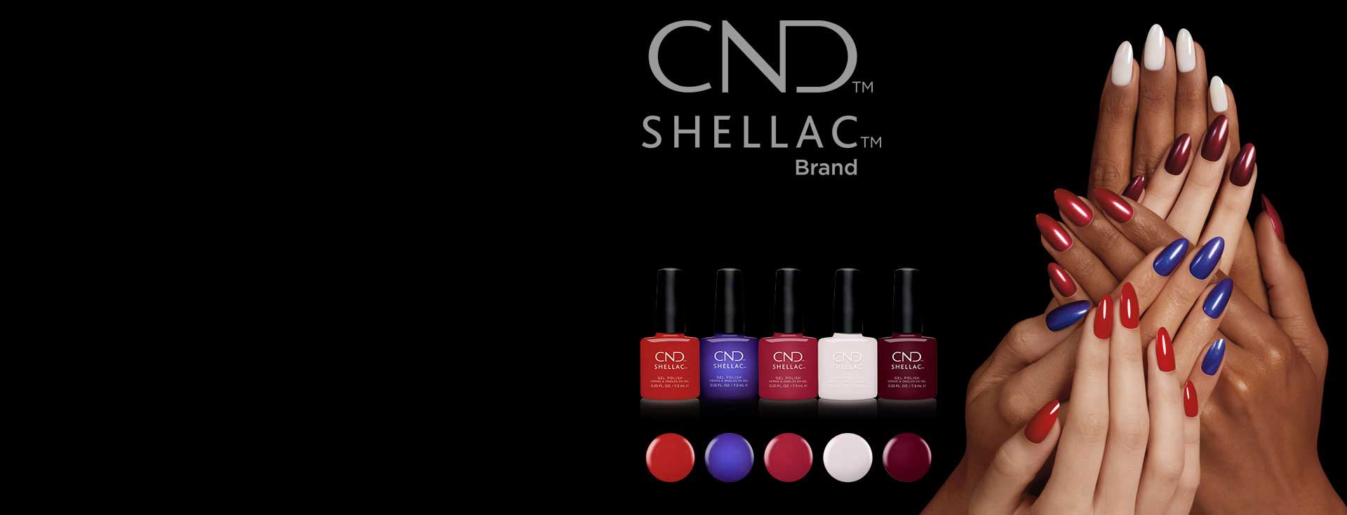 iconic-collection-banner-shellac